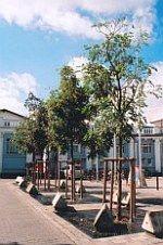 r bahnhofsplatz 155x226